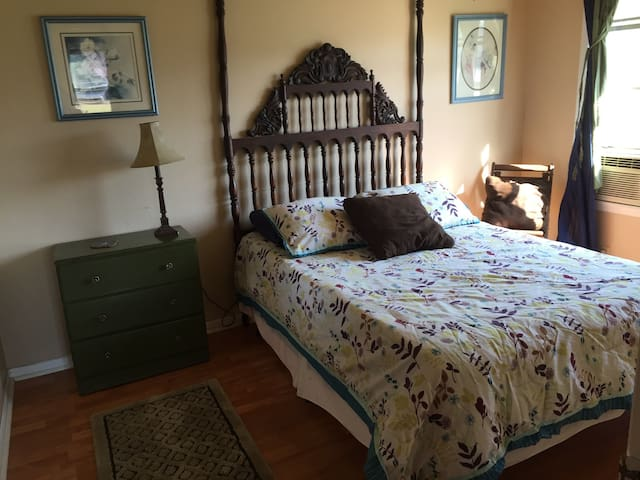 Bright, Cozy Blue Room - Rockdale - Casa
