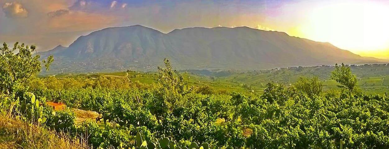 Villa Country Hill Chic - San Lorenzo Maggiore - Villa