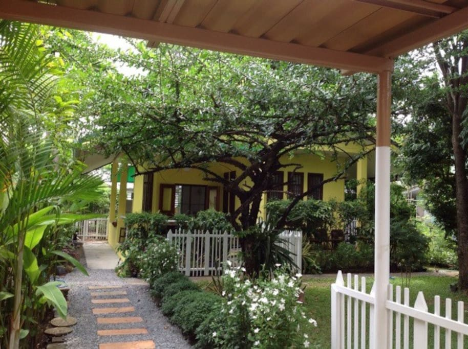 the house with trees.