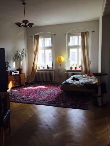 Wunderschönes Zimmer in Berliner Altbau Nähe Hbf - Berlin - Wohnung