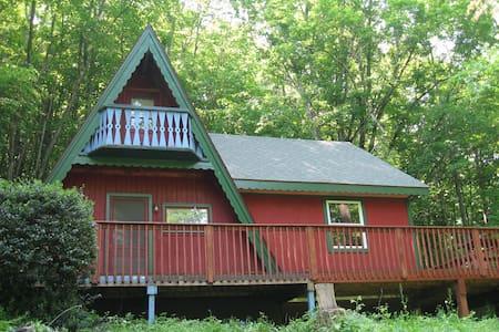 Charming Catskills Home, Pond, Stream, 10 Acres - Pine Hill