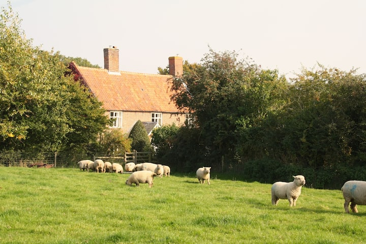 Countryside retreat near Southwold