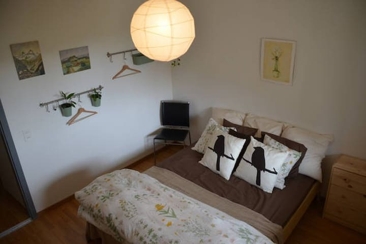 Cozy room in spacious apartment. - Brugg - Apartamento