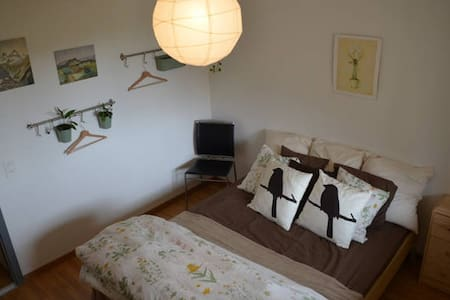 Cozy room in spacious apartment. - Brugg - Lejlighed