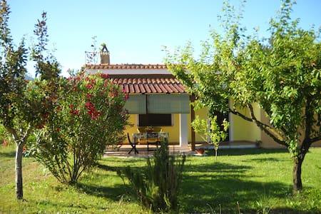 Relaxing country home in Sardinia - Villamassargia - Haus