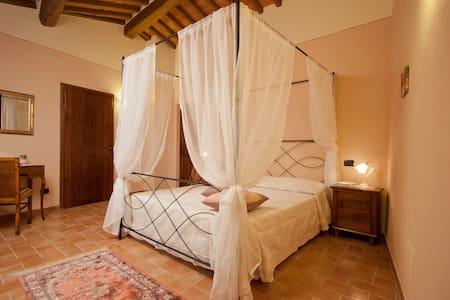 Relax nella campagna etrusca - Cortona - Bed & Breakfast