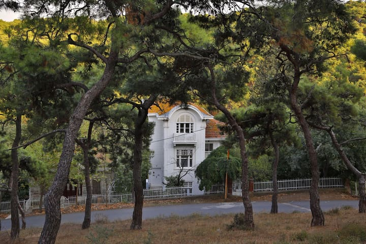 Lale Köşk apartment 2 - Büyükada - Bed & Breakfast