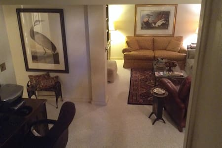 Fabulous  downstairs apartment in beautiful home - Columbus - Maison