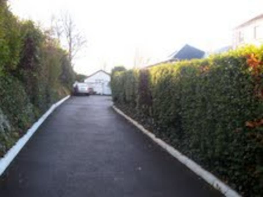 Hedge lined drive to Margaret's guest house