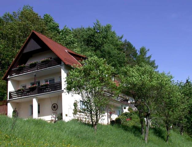 """Ferienwohnung """"Blumenwiese"""" - Egloffstein - Apartamento"""