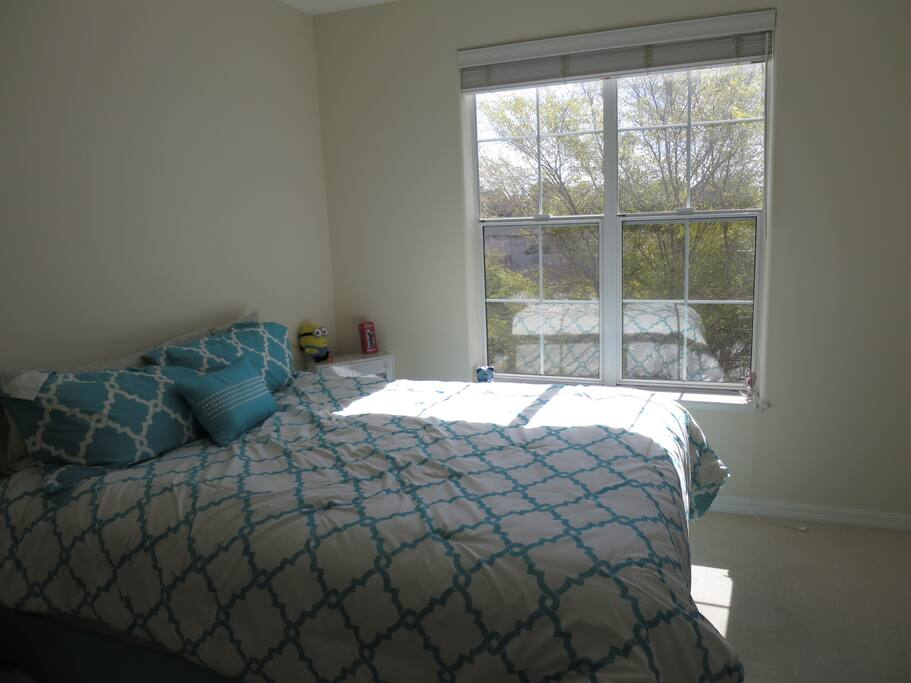 Large master bedroom with open closet for guest use.