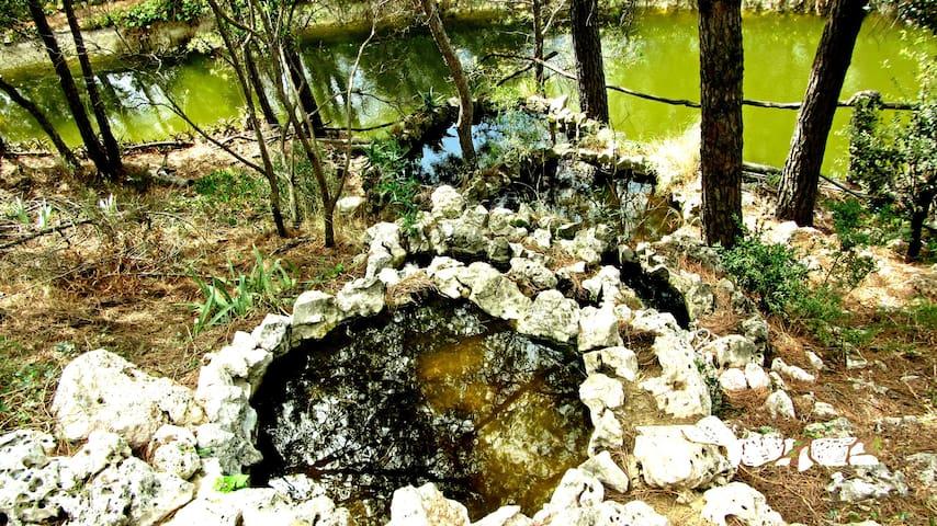 La casa dels llacs - Sant Feliu de Buixalleu - Dům