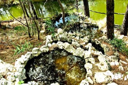 La casa dels llacs - Sant Feliu de Buixalleu - 단독주택
