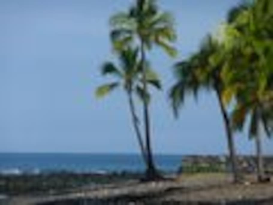 Black sand beach on the property with amazing snorkeling and sunsets