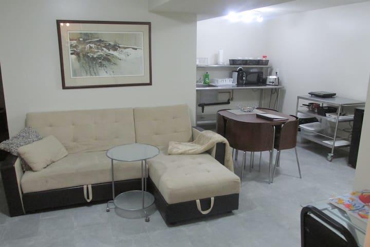 Beautiful Basement Apartment - Mississauga - Huoneisto