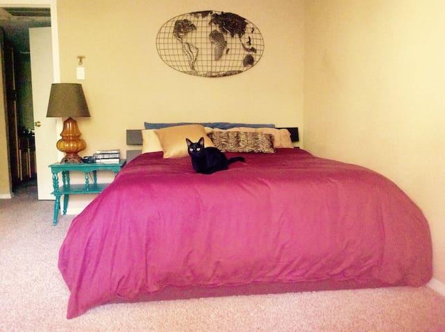 COZY 1 BEDROOM IN NORTH DALLAS - Dallas - Appartement