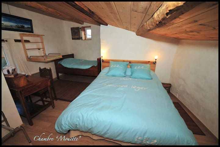 "Chambre d'hôte TILOURS ""MOUETTE"" - Billom - Bed & Breakfast"