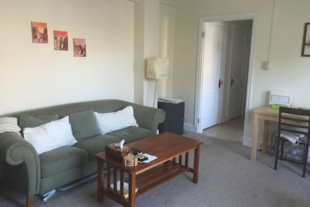 Sunny 1br in Heart of Hrvd Sq -new! - Cambridge - Apartment