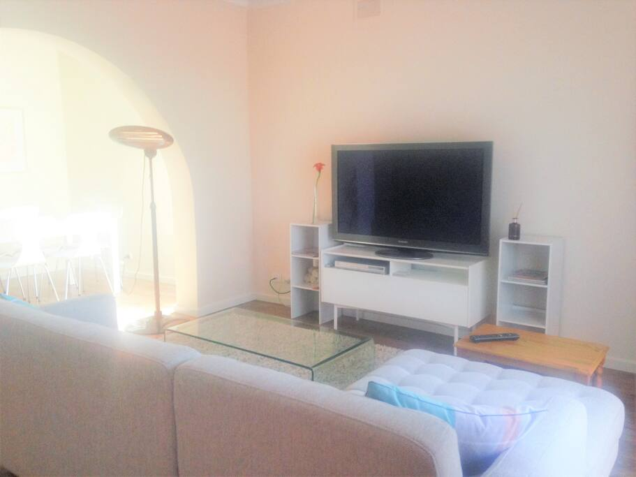 Comfy living room with large flat screen television and dvd player.