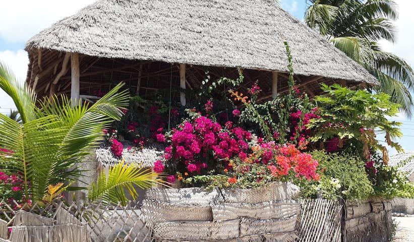 Kikururu Bungalow, Jambiani, Zanzib - Jambiani - House
