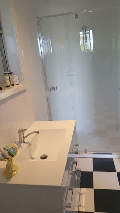 New ensuite - vanity basin & shower