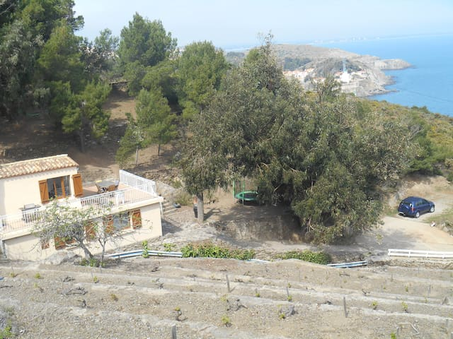 Fully detached house on 2 acre site - Port-Vendres - House