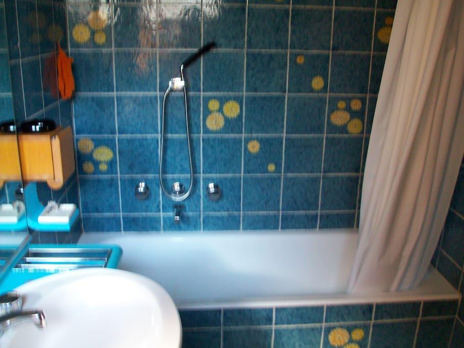 Roma centro stanza con bagno privato al gianicolo case in affitto a roma lazio italia - Stanza con bagno privato roma ...