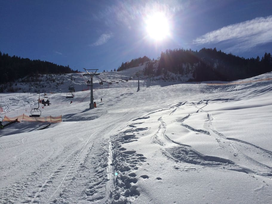 Skiing in the sunshine