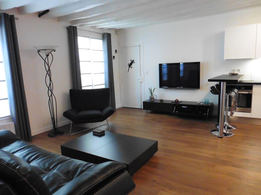 appartement paris centre le marais appartements louer paris le de france france. Black Bedroom Furniture Sets. Home Design Ideas