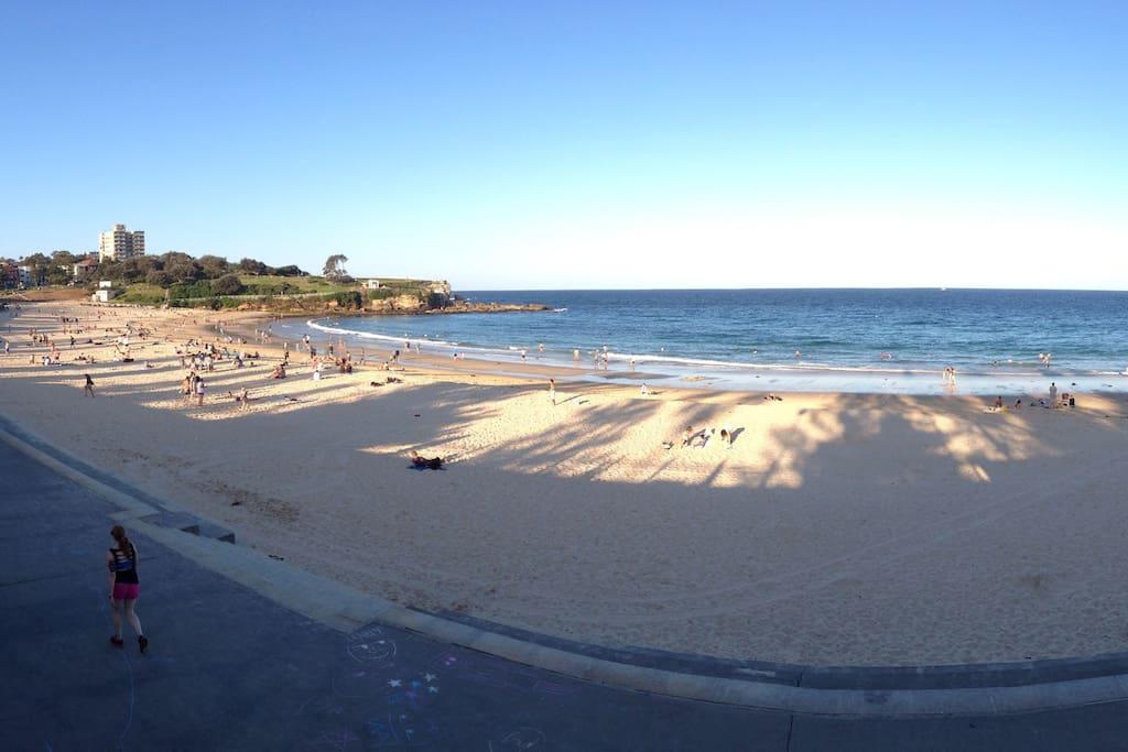 Coogee beach just a short stroll away