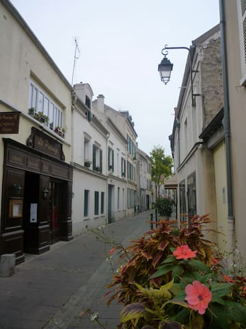Calme et verdure en centre ville. - Rueil-Malmaison - Apartament