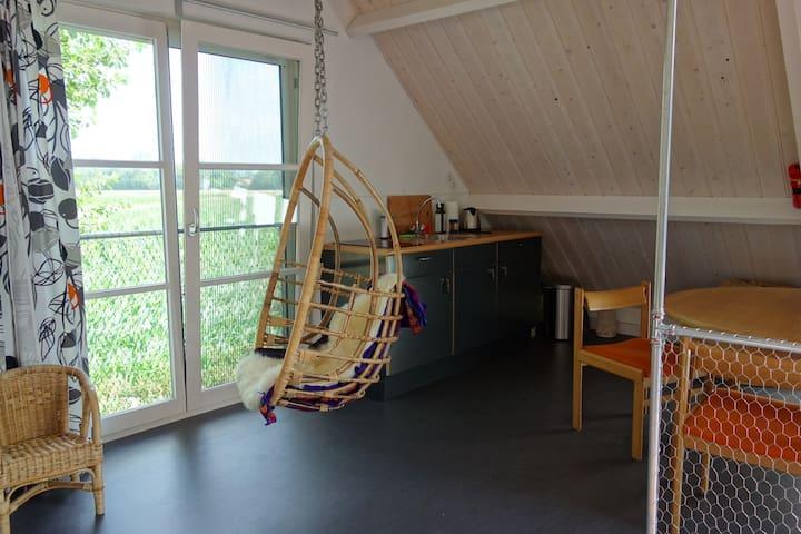 """Verblijf op """"Hofje Margo"""" - Meliskerke - Apartament"""