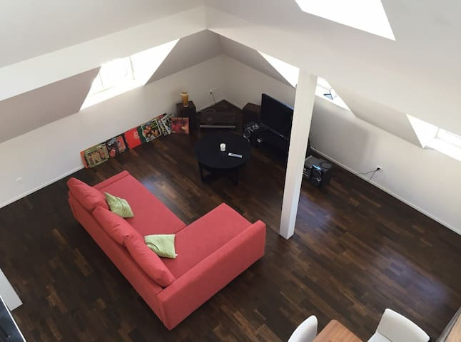 Sunny Loft with Private Rooftop - Zürich - Loft
