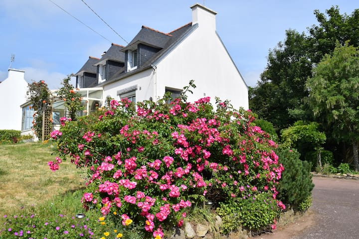 Maison Hirondelles Bed & Breakfast - Loctudy - Bed & Breakfast