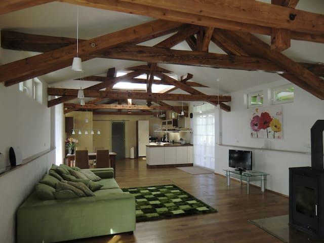 ruhige 100 qm Wohnung in Filstal  Stuttgart - Ulm - Deggingen - Apartament