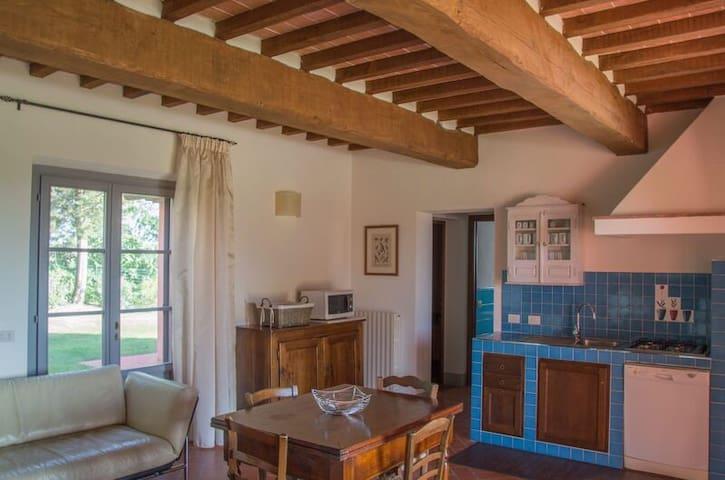 Podere La Casa - app. Grappolo - Palaia - Apartment