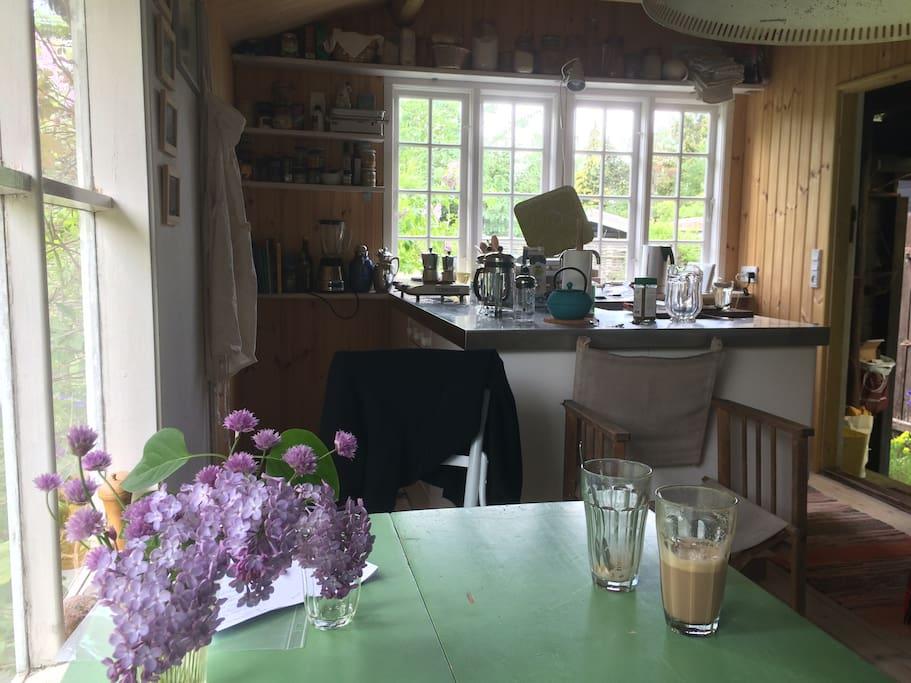 Køkken med køkkenø og stue i eet