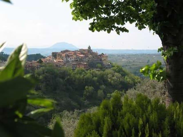 Il gioiello nel borgo antico - Montelibretti - Rumah