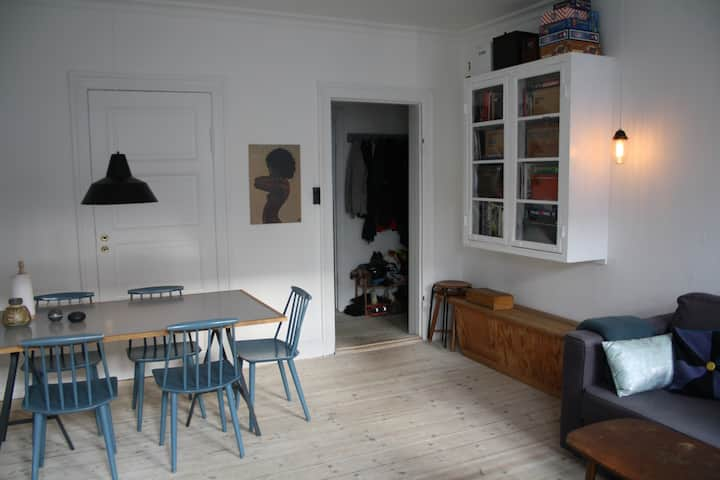 Cosy apartment in Copenhagen