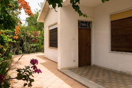Villa Le Maioliche 1 - Lido Rossello - 단독주택