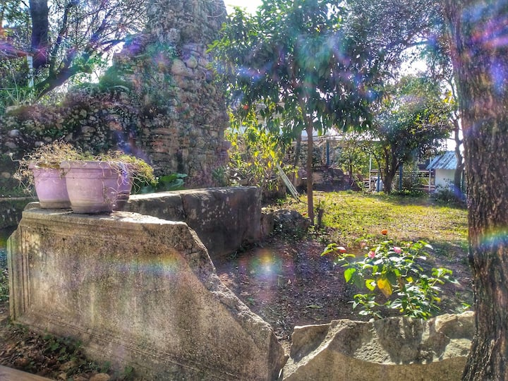 Camp in T Archeological Garden!Wifi,Toilet,Kitchen