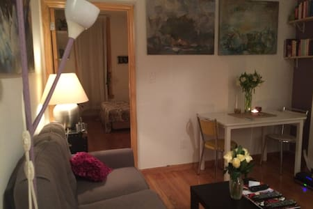 I absolutely love my apt, is spacious, modern, close to the subway and the greatest bars and restaurants of the Lower East Side of NYC. I am going in vacation & I am looking for responsible guests to rent it to while I am away. TV, Internet included.