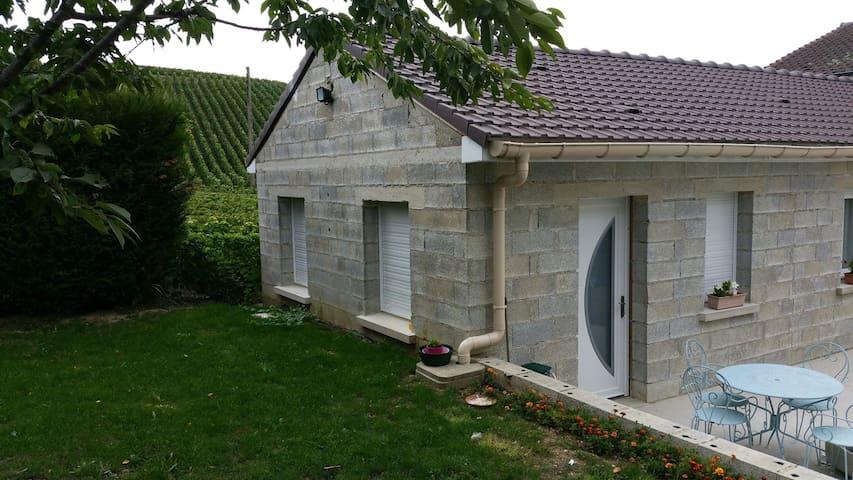 Appartement au milieu des vignes - Épernay - Wohnung