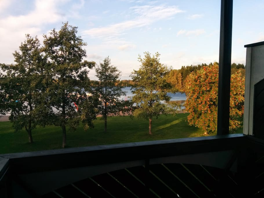 View from balcony in summer
