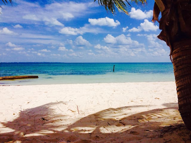 BEACHFRONT CONDO AND PANORAMIC VIEW - Cancún - Flat