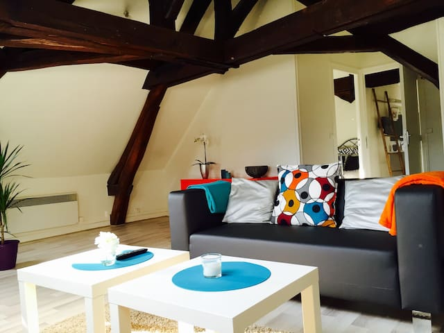 f2 centre 70m2 petit dej offert Breakfast included - Orléans - Apartament