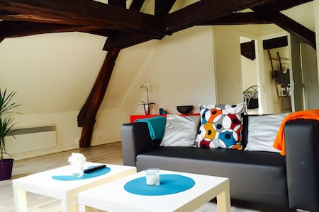 f2 centre 70m2 petit dej offert Breakfast included - Orléans - Apartamento