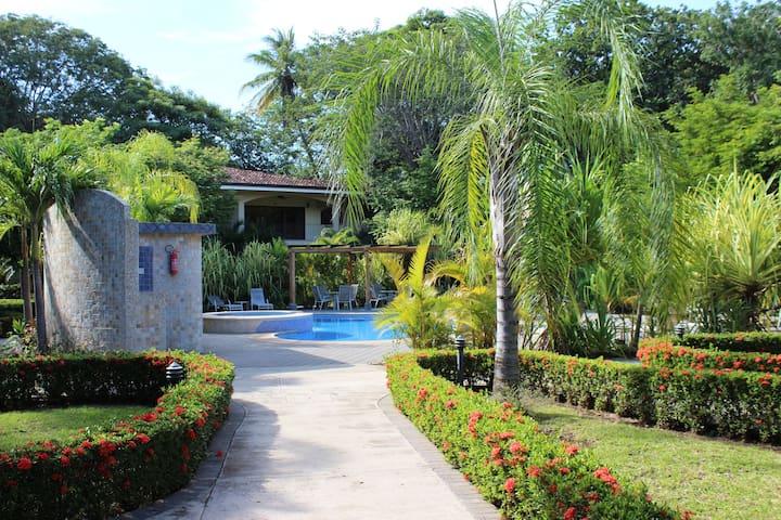 Tropical Oasis in Playa Penca / Potrero
