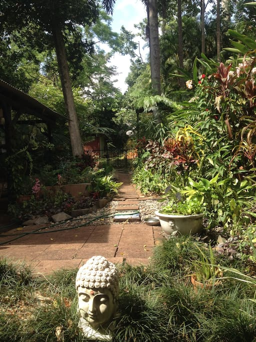 Tropical garden- path leads to a sparkling pool and pergola.