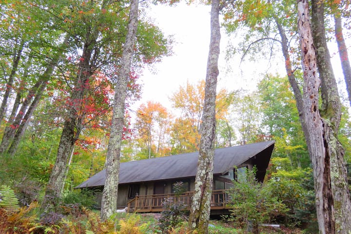 Woodsy Zen Retreat! - Livingston Manor - House